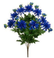 CORNFLOWER BUSH x9 BLUE 17""