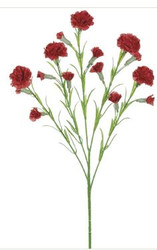 CARNATION SPRAY MINI x15 RED