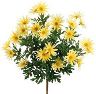 DAISY BUSH YELLOW 19""
