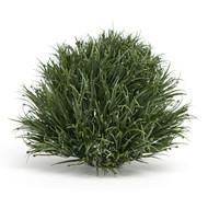 """GRASS ROUND HALF ORB 7.5 """""""