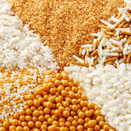 SPRINKLES GOLD WHITE 6 CELL