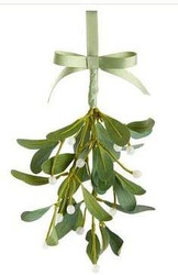 ICED MISTLETOE HANGING