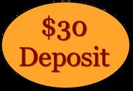 WORKSHOP: Deposit Payment (non-refundable)