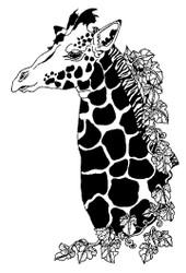 Giraffe- 49A03