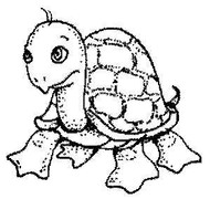 Turtle - 54A06