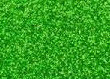 Kelly Green Ultra Fine Glitter