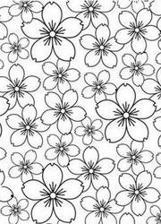 Cherry Blossom Embossing Folder