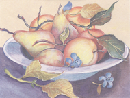 Fruit Bowl Note Cards