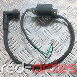 PITBIKE / ATV IGNITION COIL & HT LEAD (TYPE 1)