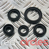 110cc PITBIKE / ATV OIL SEAL SET