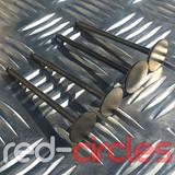 YX140, YX150 & YX160 PITBIKE / ATV VALVES (4v)