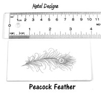 Peacock Feather - Laser Paper single