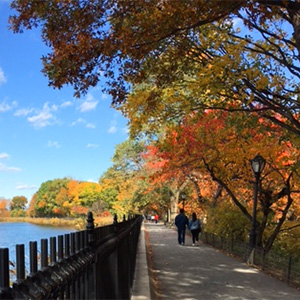 Fall Colors in Central Park | Central Park Reservoir