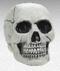 670458 Cemetery Plastic Value Skull