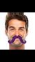 """390122.14 2 2/3"""" x 5 1/2"""" Moustaches Purple"""