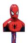 34278 Spider-Man 3D Pull Pinata