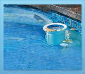 Pool Skim Pool Skimmer