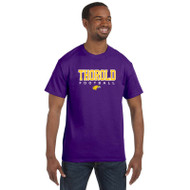 TSS Gildan Men's Cotton T shirt - Purple (TSS-013-PU)