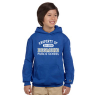 VDS Champion Youth Powerblend EcoSmart Pullover Hoodie - Royal (VDS-301-RO)