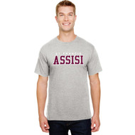 SFA Champion Adult Ringspun Cotton T-Shirt Design B - Oxford Gray (SFA-008-OX)