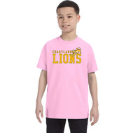 CJS Gildan Youth Heavy Cotton T-Shirt - Light Pink (CJS-301-LP)