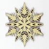 phoenix-snowflakes-5-thumb-1.jpg