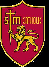 stm-logo1.png