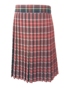 Girls Skirt - Knife Pleat in Plaid 56