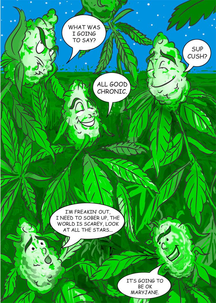 Best Buds 518 Funny Marijuana Birthday Card 6 Pack
