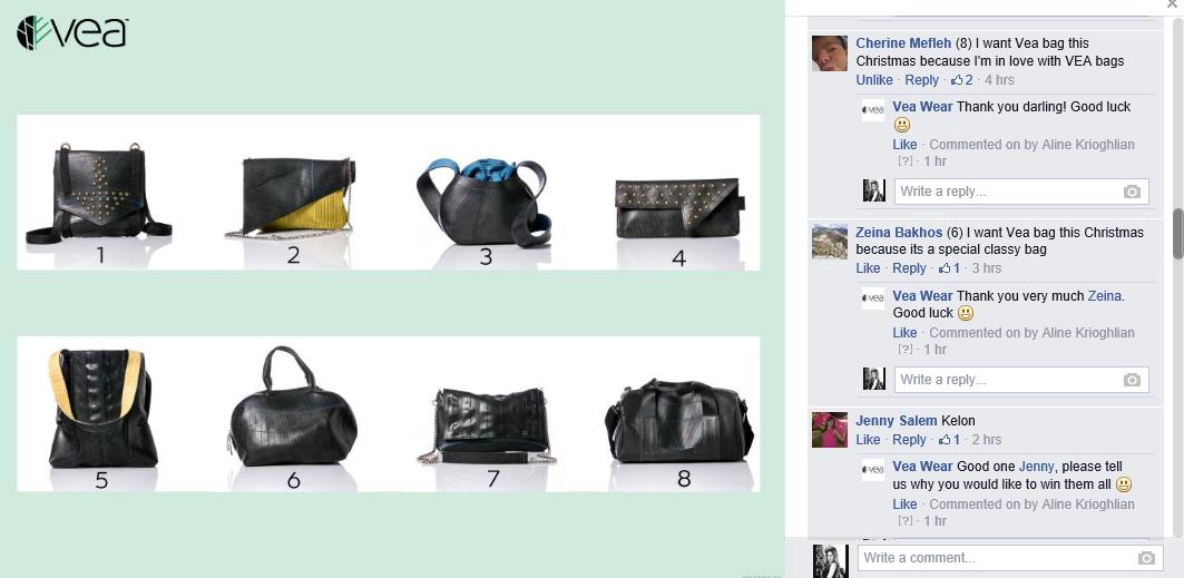 I want a VEA bag because...