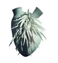 Wall Heart - Peluche Copia