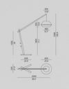 Oops Walnut Floor Lamp Size Overview