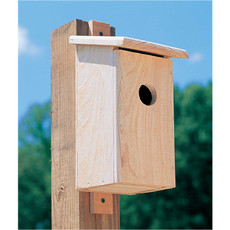 Cypress Bluebird Box House