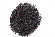 Jalpur Black Mustard Seeds