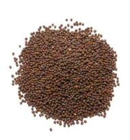 Jalpur Brown Mustard Seeds (Brown Rai)