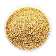 Jalpur Foxtail Millet Seeds