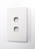 Dual Port Face Plate - Type 2