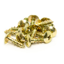 Heavy Duty Roller Mounting Screws (set of 12)