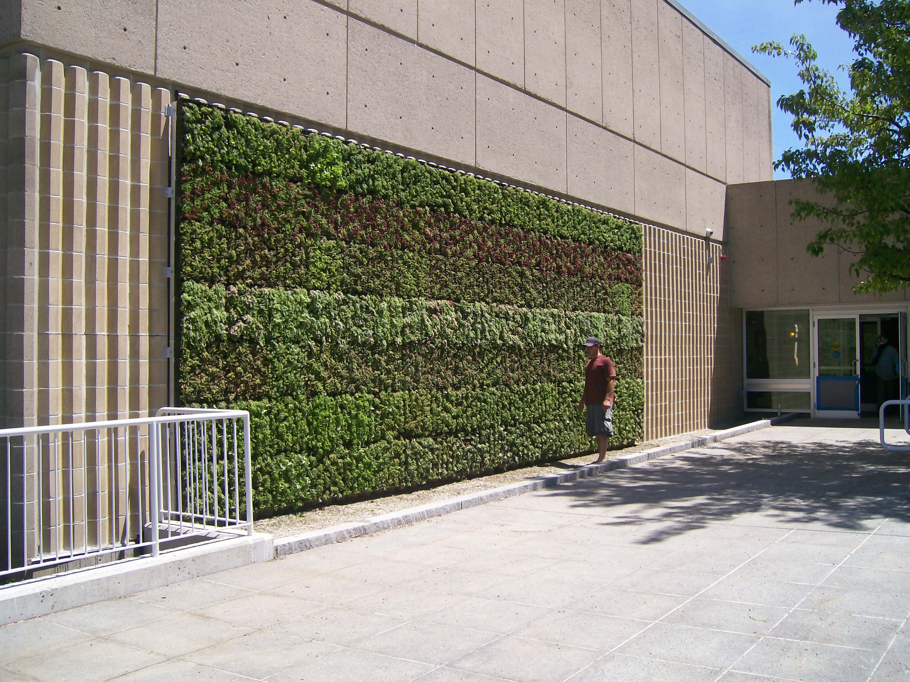 GroVert MC Living Wall