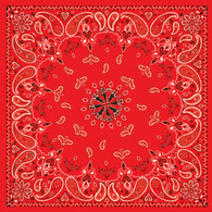 ZAN Headgear Cotton Bandanna with Red Paisley Pattern