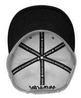 "Demarini 1979 Snapback Baseball Cap Hat ""D"" Logo Adjustable Flat Bill Gray/White"
