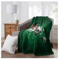 "Northwest NBA Boston Celtics Street Raschel Blanket Plush Throw 60"" x 80"" MA"