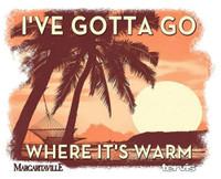 Tervis I've Gotta Go Where Warm 20 oz. Stainless Tumbler Travel Cup Mug Lid USA
