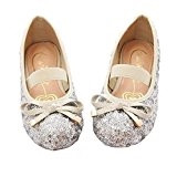 Little Girls Sequin Ballet Flats (Silver, 12) 1