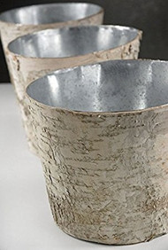 "Tapered 7"" Birch Round Pot with Zinc Liner"