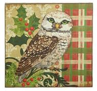 15.5 White Owl Print