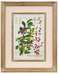 "R Z Holly Framed Botanical Print 20.5""L X 26""H"