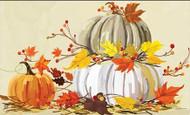 Neutral Pumpkins MatMate