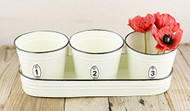 Cream Planters with Tray