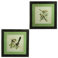 "18"" Bird Print - Set of 2"